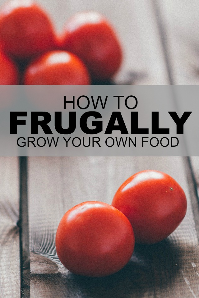a study of saving money while growing your own food Or would you rather get started growing your own healthy, fresh organic food  study hails organic food  your own organic liquid fertilizers, saving.