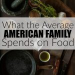 How does your grocery bill stack up to your peers? Here's what the average American family spends on food and how you can spend less!