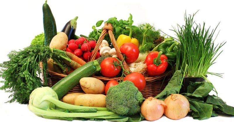 grow food indoors