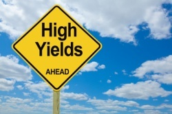High yield money market accounts look appealing right now.
